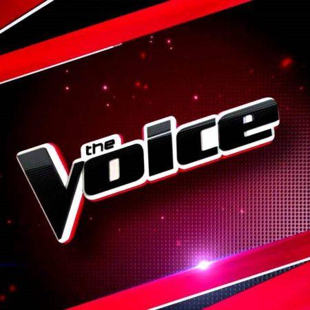 Nova temporada do The Voice norte-americano terá Shawn Mendes e Hailee Steinfeld como conselheiros