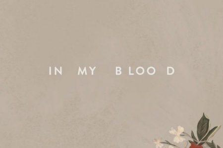 "Com show marcado no Brasil em julho, Shawn Mendes divulga hoje o videoclipe de ""In My Blood"""
