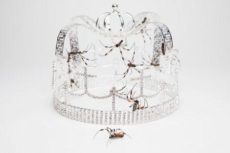 """Assista à apresentação de Billie Eilish, com a música """"you should see me in a crown"""", no Vevo Lift"""