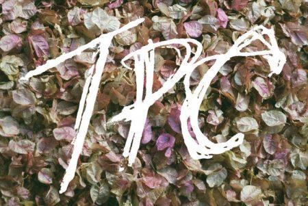 """Novo disco da banda canadense Tokyo Police Club, """"TPC"""", chega às plataformas digitais"""