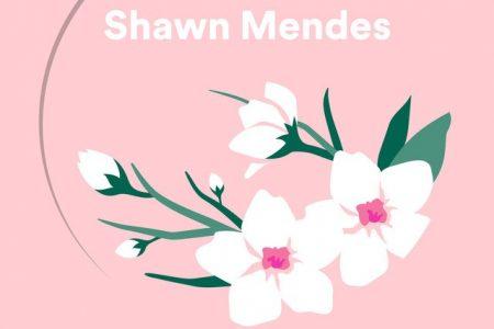 """Shawn Mendes se apresenta no Spotify Singles com uma nova versão da faixa """"Lost in Japan"""" e um cover do Kings Of Leon"""
